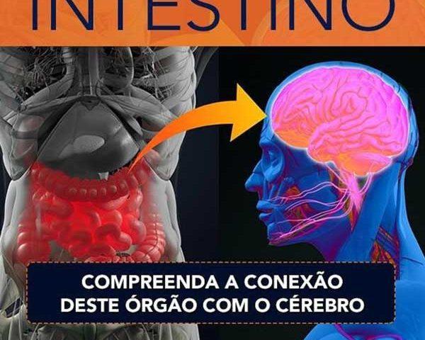 Compreenda a Conexão do Intestino com o Cérebro
